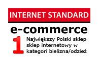 internet-standard